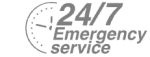 24/7 Emergency Service Pest Control in Holloway, N7 . Call Now! 020 8166 9746