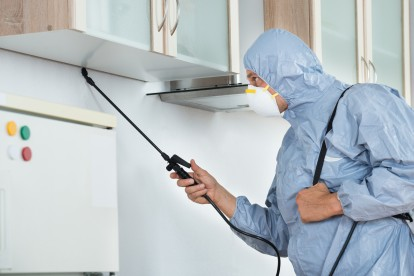 Home Pest Control, Pest Control in Holloway, N7 . Call Now 020 8166 9746