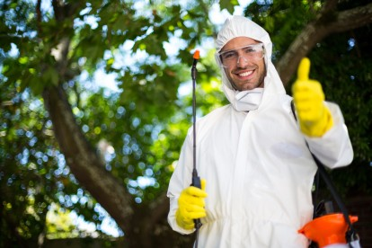 Pest Control in Holloway, N7 . Call Now 020 8166 9746